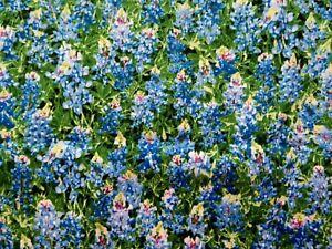 Delphinium Flowers Fabric Fat Quarter Cotton Craft Quilting Fleur Timeless Treas