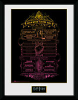 Harry Potter - Hogwarts List Collector Print 40 x 30 cm