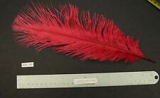 "13"" Rose Red Ostrich Drab Fly Tying/Feather Arts 3"" Plumules"