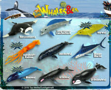 DeAgostini Whales & Co. Maxxi Edition komplett Set alle 16 Figuren Wale