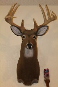 Reproduction Whitetail Deer Head Shoulder Mount Taxidermy Antelope Pronghorn