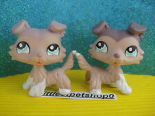 ORIGINAL Littlest Pet Shop Collie DOG # 1330 AND RARE LIGHT VARIANT