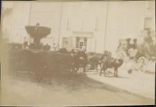 France, Saint-Zacharie, Chèvres à la fontaine, 1900, Vintage citrate print Vinta