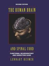 The Human Brain and Spinal Cord: Functional Neuroanatomy and Dissection Guide (C