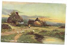 SURREY - ON THE COMMON near WOKING Postcard