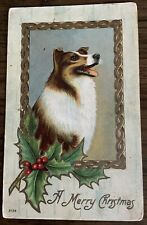 Vintage Merry Christmas Postcard Dog Collie Lassie Like Holly
