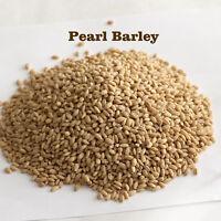 Raw Pearl Barley Bulk Naturally Processed Cebada Free Shipping