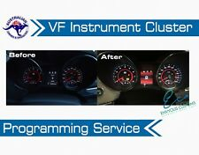 VF HOLDEN CLUSTER DASH PROGRAMMING SERVICE COMMODORE INSTRUMENT HSV VE E3 V6 V8