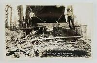 Postcard Rppc Lumberjacks Cutting Redwood Tree Crescent City California Ax Saws