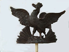 Urogallo/Capercaillie Cock/Coq de bruyère/urogallo