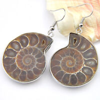 Handmade Natural Ammonite Fossil Conch Gemstone Silver Hook Earrings Woman Gift