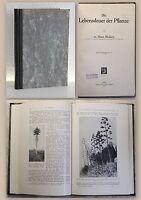 Molisch Die Lebensdauer der Pflanze 1929 Naturwissenschaften Biologie xz