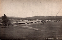 Vintage C. 1915 / 20s Colebrook PA Postcard Horse Farm Field on The Edge of Town
