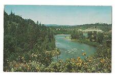 YAKIMA RIVER Flowers Sunset Highway Cle Elum Ellensurg  WASHINGTON Postcard WA