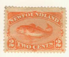 Newfoundland Stamp Scott # 48b 2-Cents Codfish MH