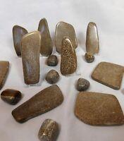 Atlasaurus Dinosaur Bone Fossil Slices & Tumble Stones - Great Gift - Morocco