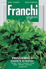Franchi Seeds of Italy - Parsley - Gigante Di Napoli - Seeds