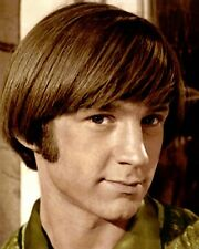 "PETER TORK THE MONKEES ACTOR SINGER MUSICIAN 8x10"" HAND COLOR TINTED PHOTOGRAPH"