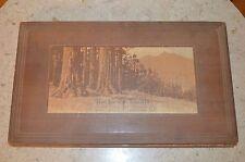 "Antique Wooden Storage Trinket Box "" The Forest Giants"""