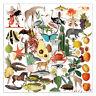 50Pcs Animals Retro Pattern Vellum Paper Die Cuts Scrapbooking Diary Planner DIY