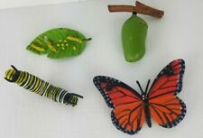 Safariology Life Cycle of a Monarch Butterfly Safari Ltd Toy Figure Set Of Four