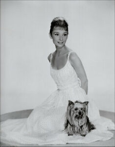 Audrey Hepburn with her dog, Mr Famous circa 1960. Tirage offset bichromie