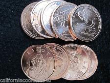 "5 x 1oz - Free Lakota Bank 1- oz ""Sitting Bull"" 2011 .999 Copper Proof-Like"