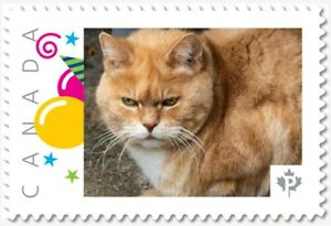Grumpy CAT = Picture Postage stamp MNH Canada 2018 [p18-09-26]