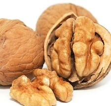 WALNUTS IN SHELL Whole Natural Raw Best Quality Nuts 500g . P& P UK