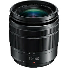 Panasonic Lumix G Vario 12-60mm f/3.5-5.6 ASPH. POWER O.I.S. Lens