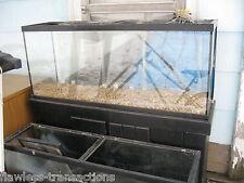 55-gallon GLASS Aquarium - Small Pet / Reptile / Fish Tank - Pro Grade