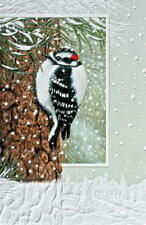 2 Boxes Pumpernickel Press Woodpecker CHRISTMAS CARDS  USA  SALE!