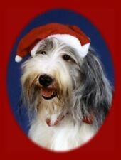 Pet Christmas Cards:Dog Old English Sheep Dog