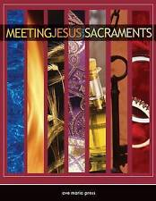 NEW Meeting Jesus in the Sacraments by Michael Amodei