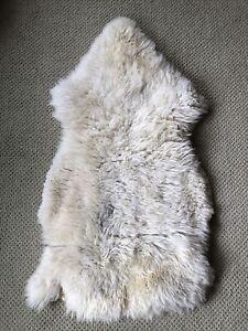 Used Genuine Sheepskin Rug