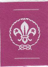 Boy Scout Badge ribbon WORLD MEMBERSHIP