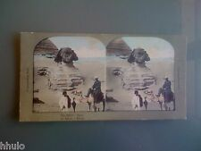 STC355 Egypte Egypt Le Sphinx couleurs STEREO Photography Stereoview