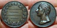 pci5816) medaglia Luigi Lagrange Matematico serie personaggi famosi inc Galeazzi