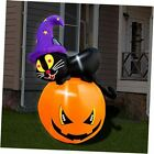5ft Inflatable Halloween Cute Black Cat with Pumpkin Decoration, LED Blow Up