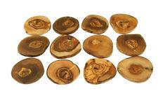 Untersetzer Glasuntersetzer 12tlg. Holz Olivenholz