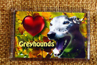 Black Greyhound Gift Dog Fridge Magnet Birthday Gift % to Greyhounds Charity