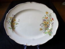 Royal Doulton. Somerset. Serving Plate. D6029. (34cm x 27cm). Made In England.