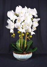 Medium Artificial Phalaenopsis Orchid Plants with Porcelain Pot [White]