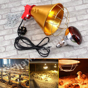 Heat Lamp Poultry, Puppies, Dog, Kittens Piglets Animals With Optional Bulb!!!