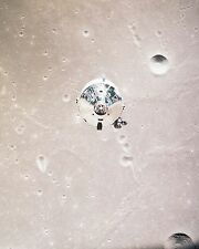 Apollo 11 Command Module in orbit as seen from Luner Module - New 8x10 Photo