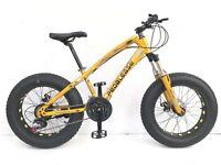 Big Cat Fat Snow Beach sand Mountain bike 21 speed Front Suspension Disc Brake