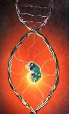 The Deus Machine: A Novel Ouellette, Pierre Hardcover