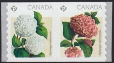 HYDRANGEA = Pair of coil stamps MNH VF Canada 2016 #2898a
