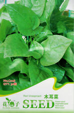 1 Pack 30 Malabar Spinach Seeds Agaric vegetables Organic C028