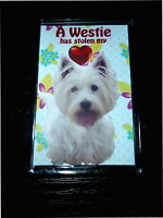 Westie Gift Dog Fridge Magnet West Highland White Terrier Birthday Xmas Gift